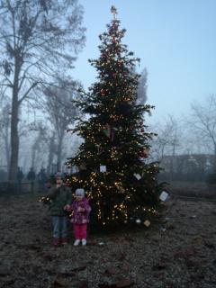 Lorenzo e Bea ai piedi dell'albero