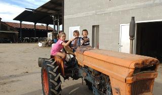 I bimbi alla guida del trattore