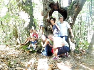 Foto di gruppo nel bosco di castani