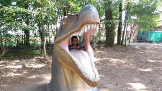 Nella bocca dello spinosauro